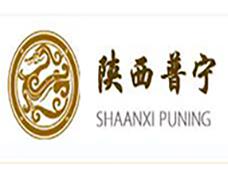陕西普宁工程结构特种技术有限公司