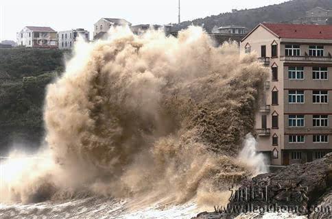 """台风过境,专业房屋加固为您""""保驾护航"""""""