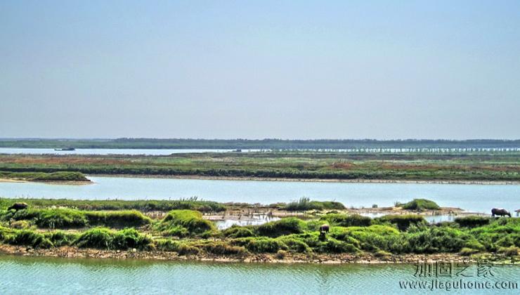 鄱阳湖区重要堤防工程 将进行除险加固