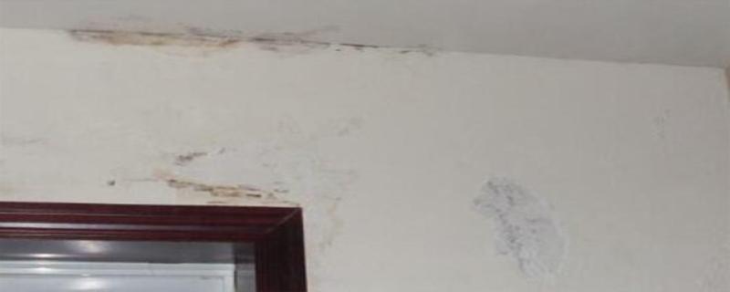 外墙渗漏的形式